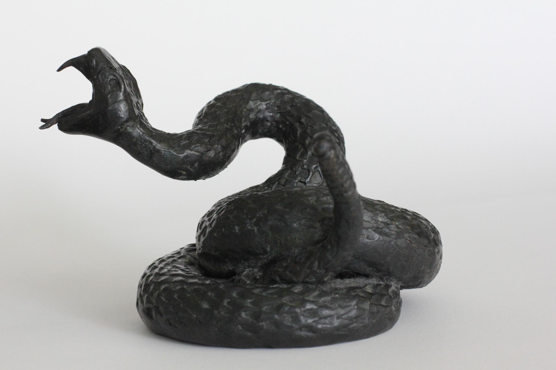 snakeforwebver2.5.jpg