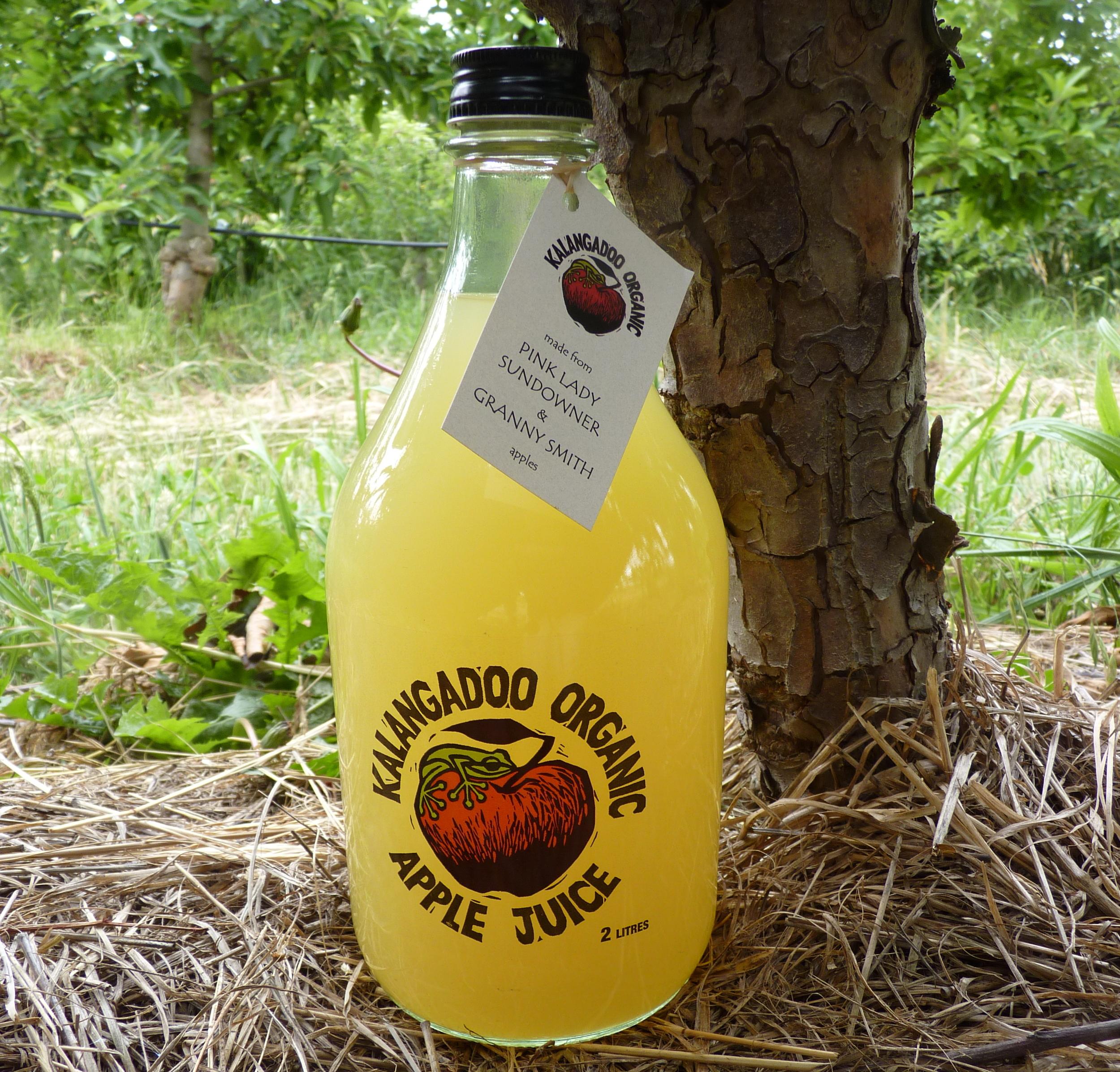 cloudy juice 2 litre