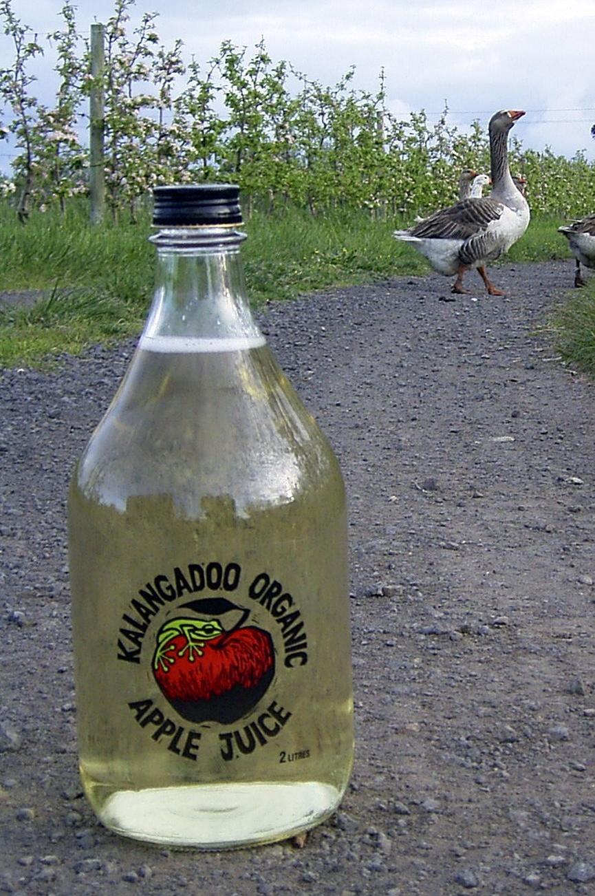 Clear 2 litre juice