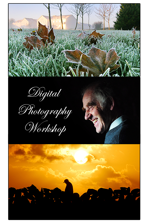 final workshop new 2014.jpg