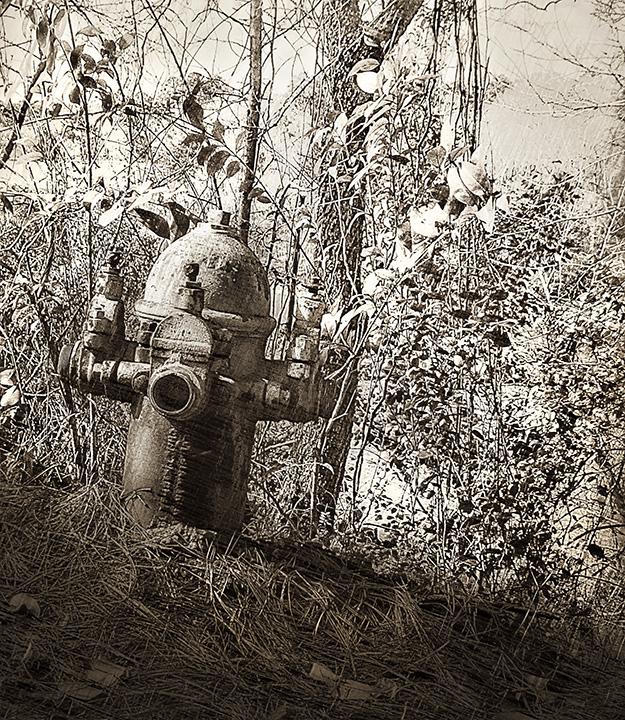 Bibb Fire Hydrant.jpg