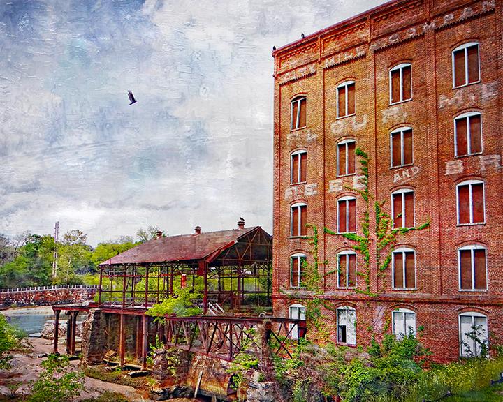 City Mills Birds.jpg