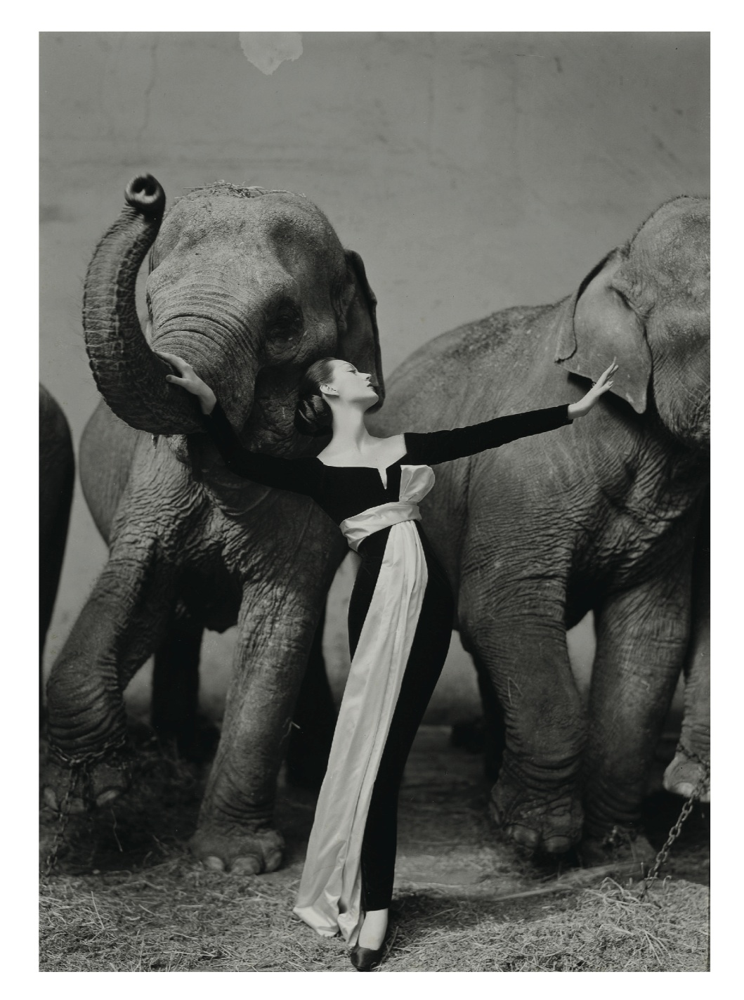 © 2014 The Richard Avedon Foundation