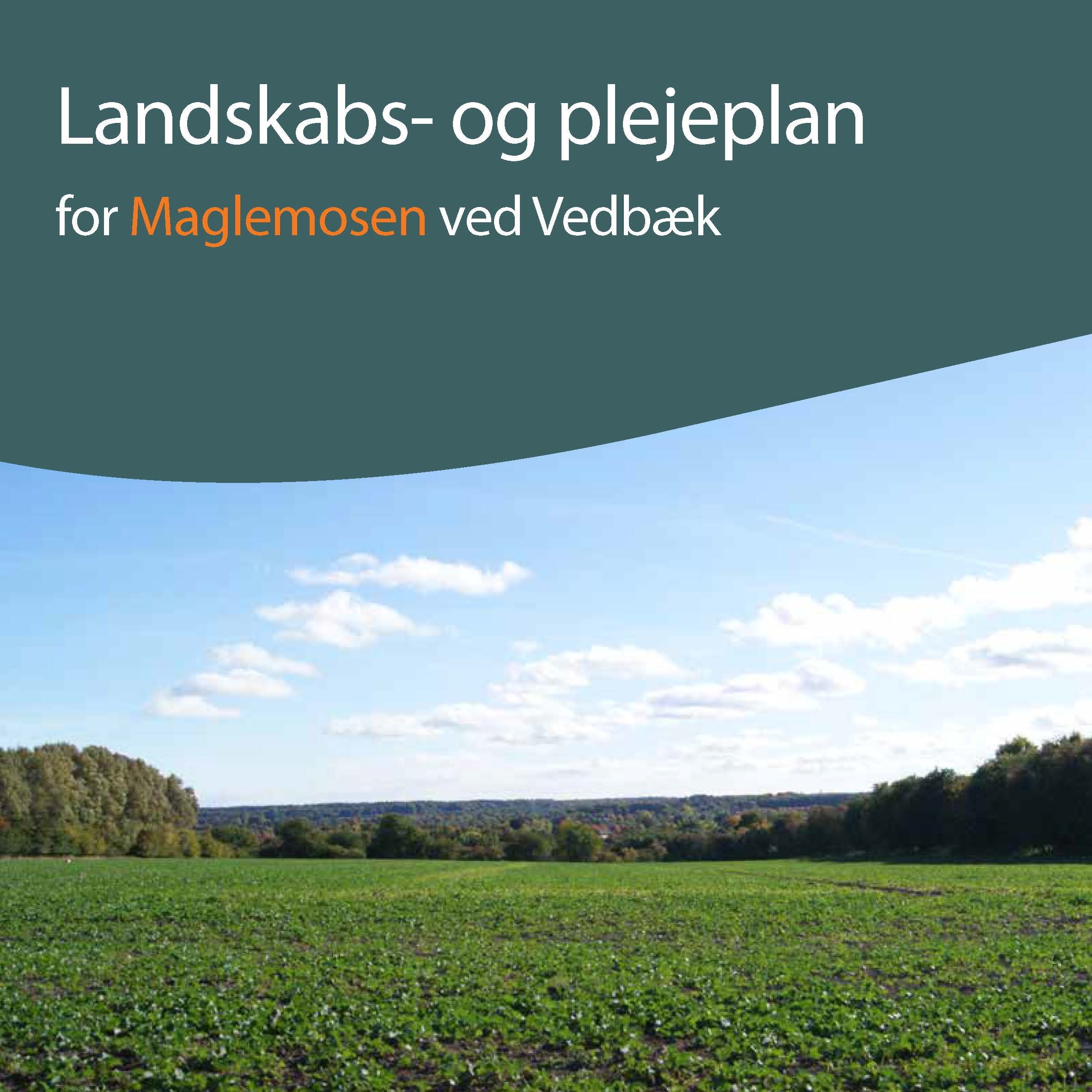 forsider landskab_Side_6.jpg