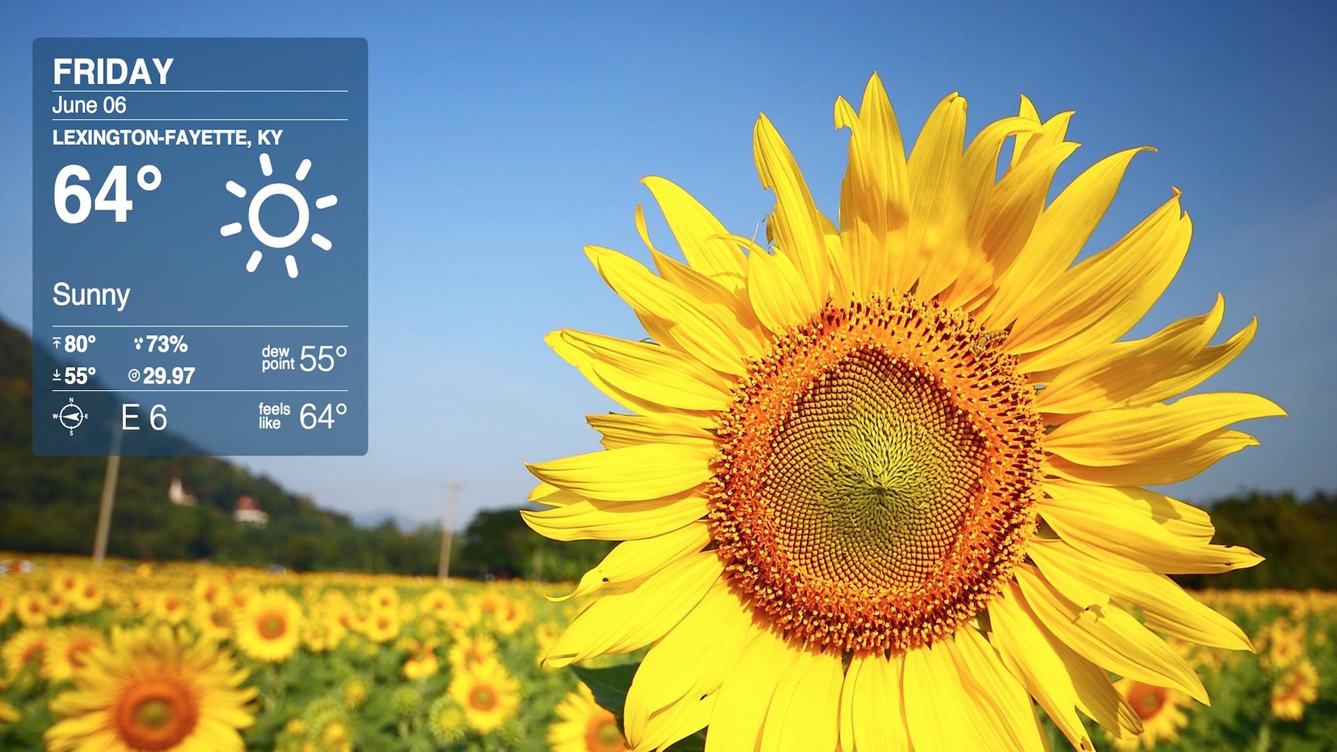 Screen Shot 2014-06-06 at 8.58.40 AM.jpg