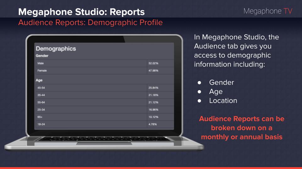 Link:  Megaphone 101: Reports