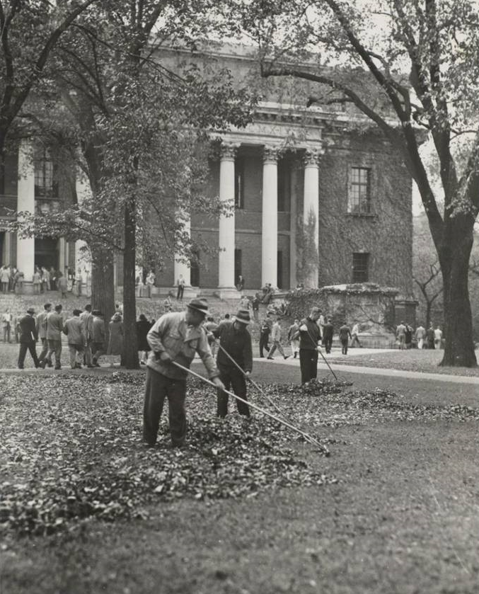 Raking Harvard Yard, 1946