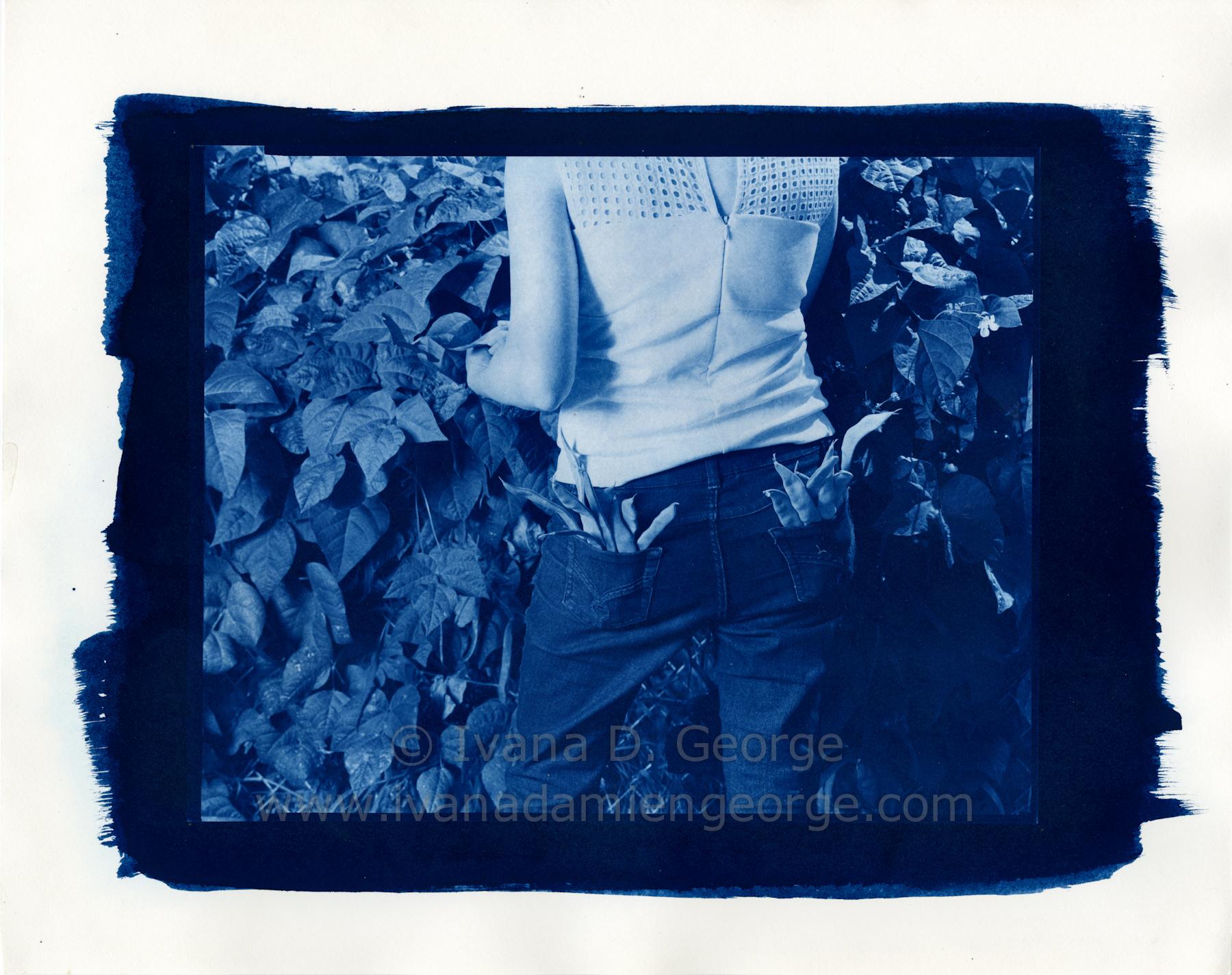 garden2015008.jpg