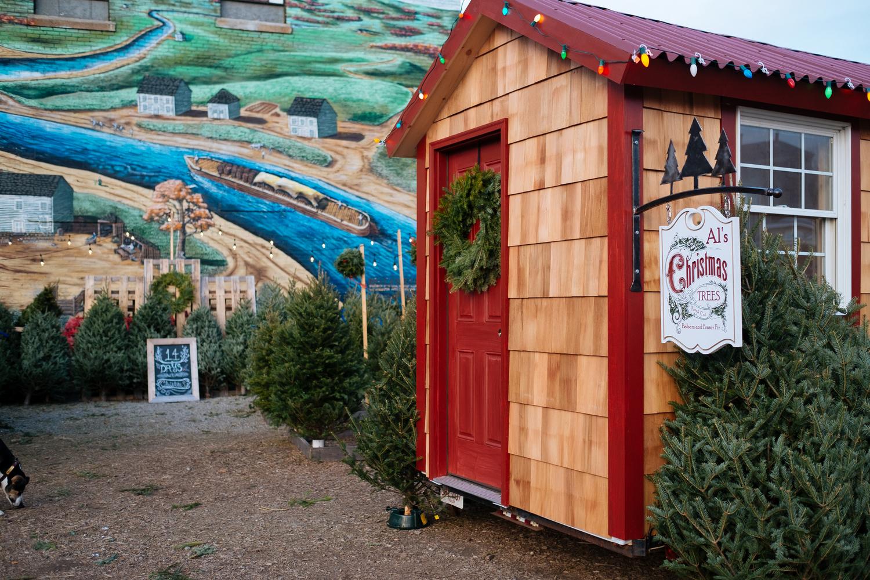 Al's Christmas Tree Lot