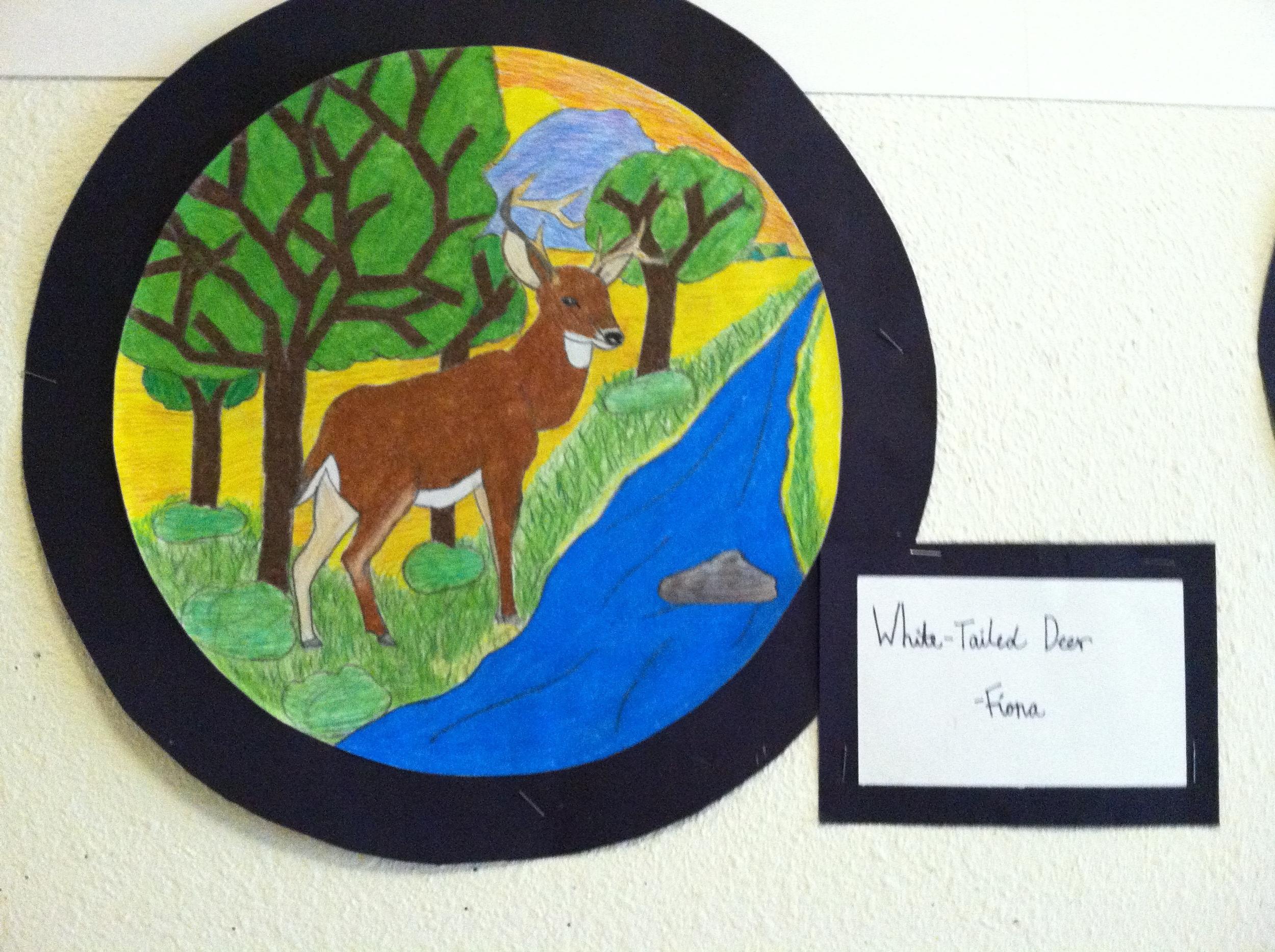 Fiona, habitat plate design.JPG
