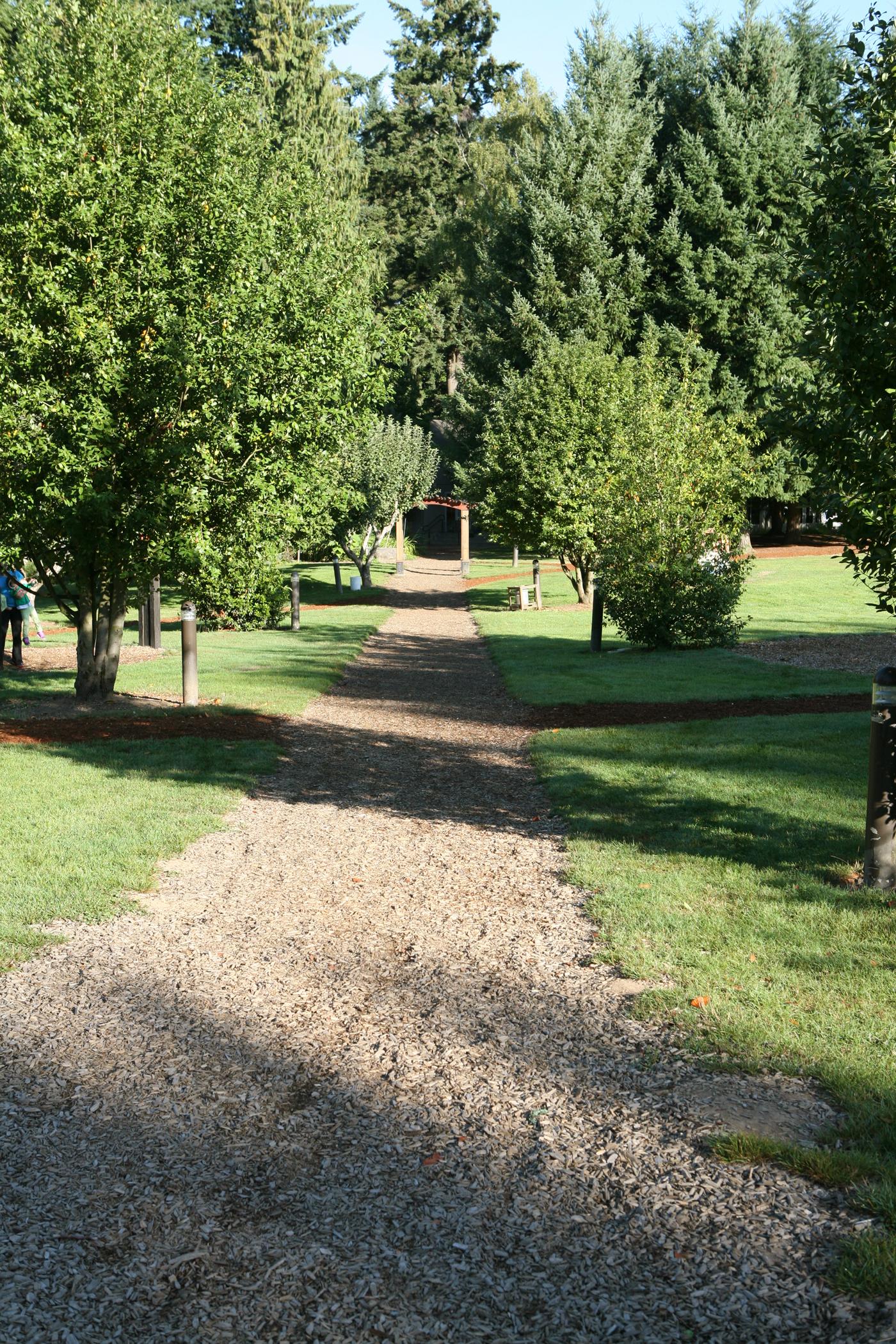 Campus Path.jpg