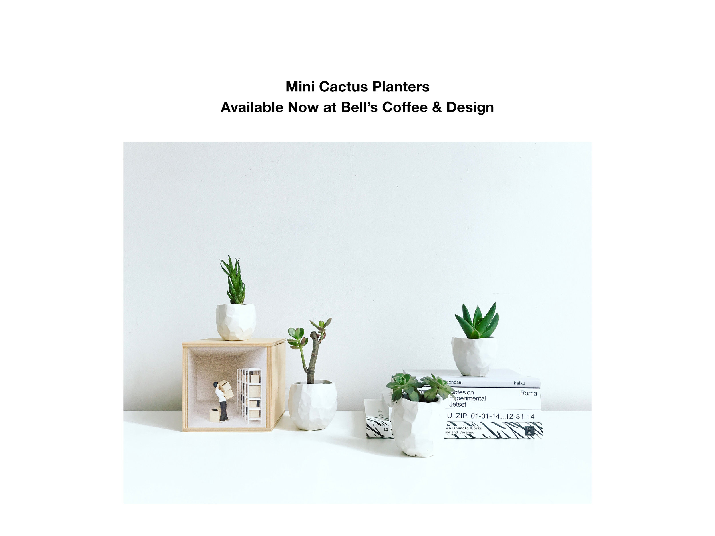 New mini cactus planters are now available at Bell's Coffee and Design in Soho NYC at 30 Grand Street.