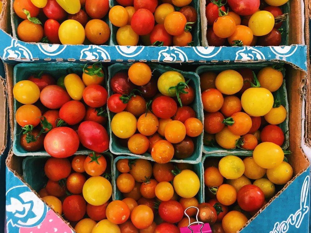 Possum+Hollow+Farm+Tomato+Season.jpg