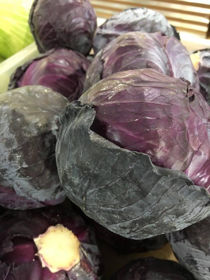 FS+red+cabbage.jpg