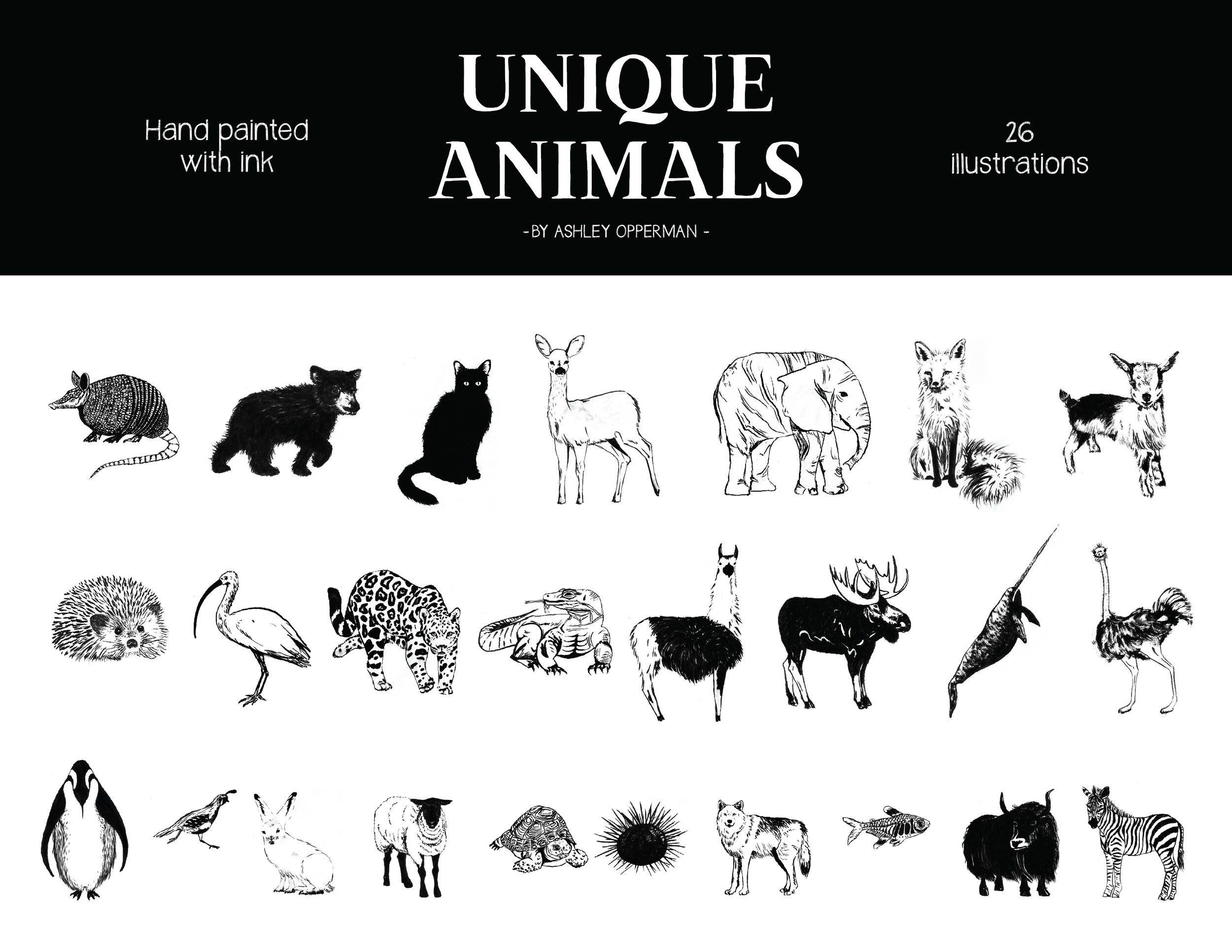 Animals-Oct2018-01.jpg