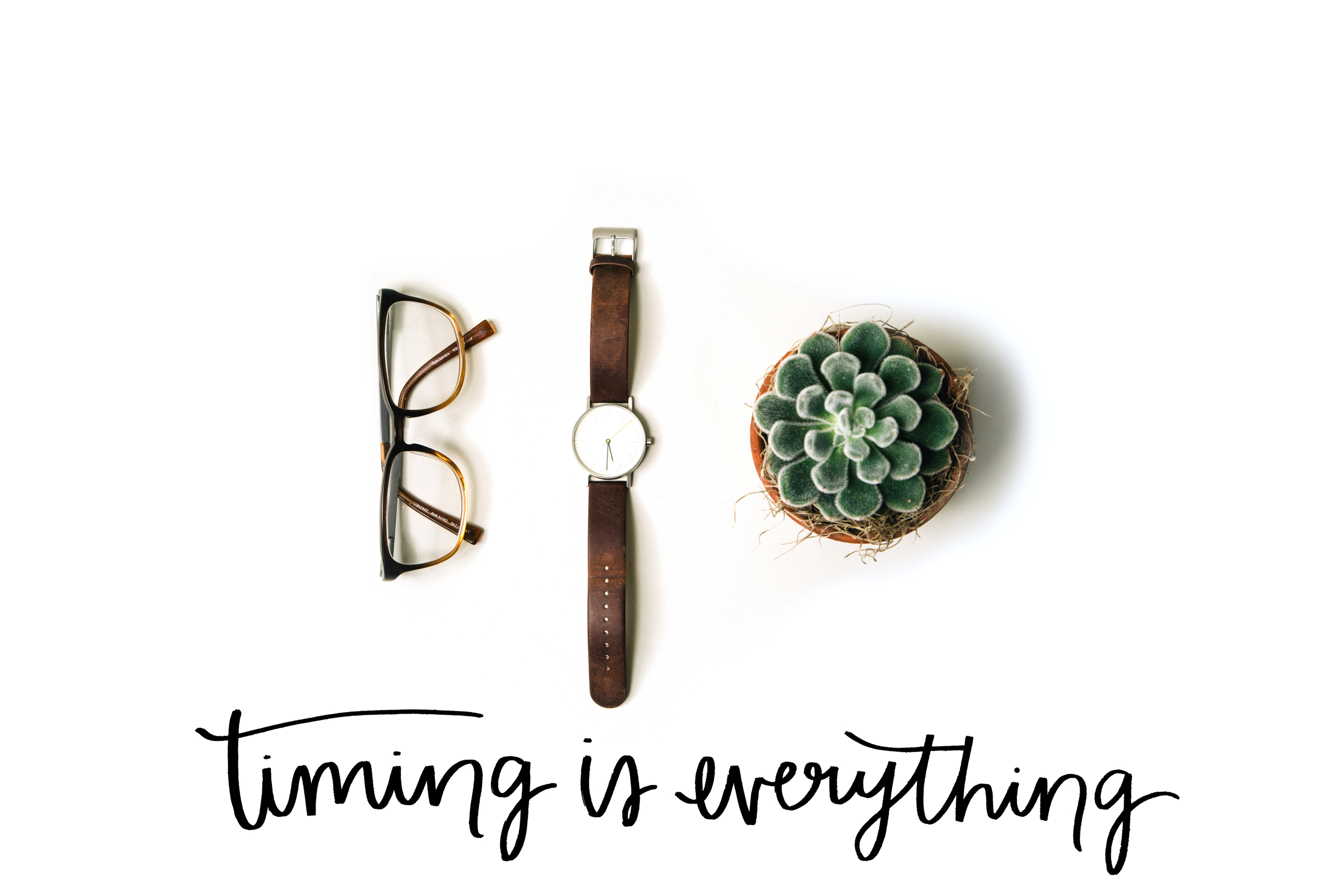 Timing Is Everything by www.chelceytate.com