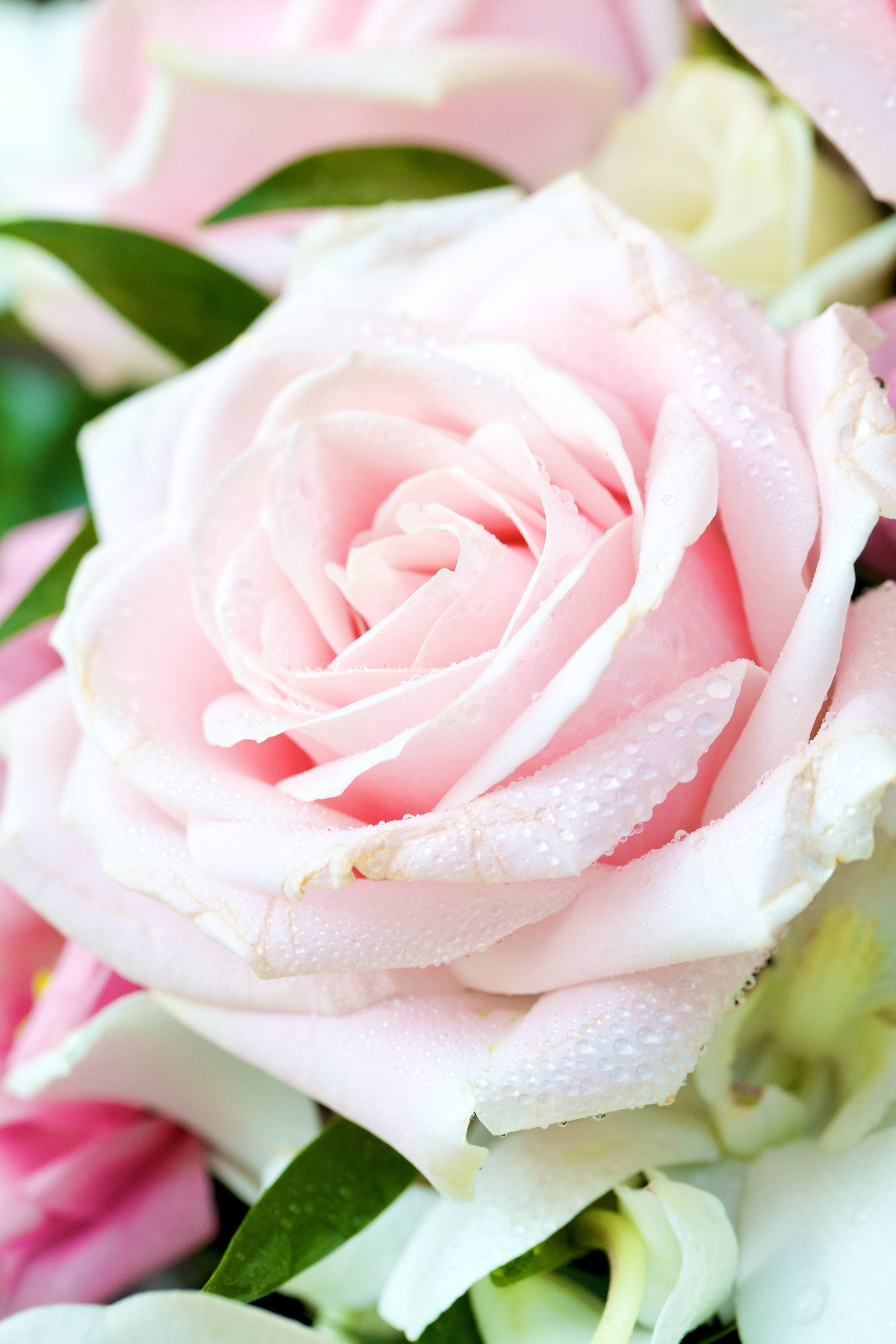 Fragrance your Wedding - Bespoke and Events