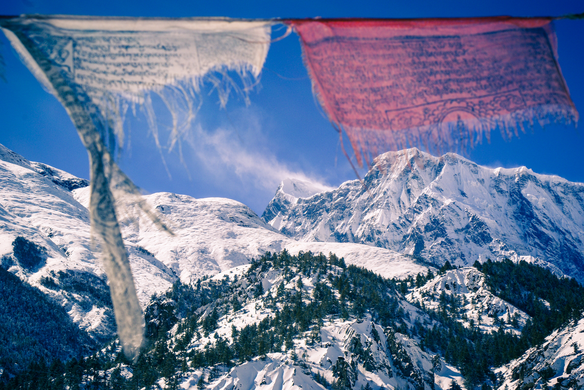 Himalayas, Annapurna region, Nepal