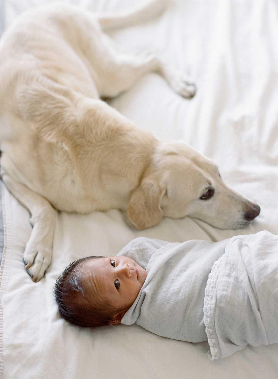 fresno-newborn-photographer_0563.jpg