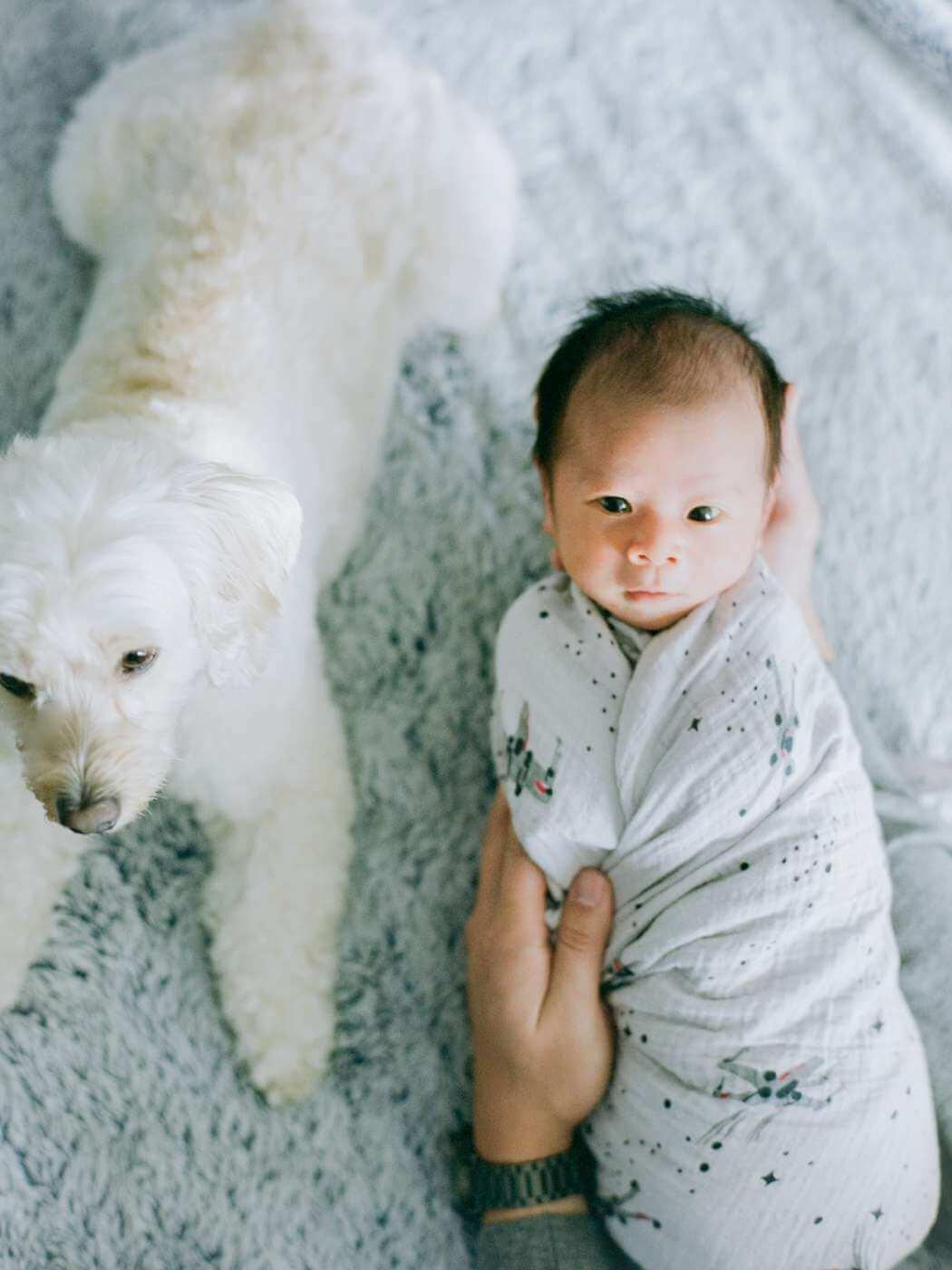 fresno-newborn-photographer-elisabeth-kate-studio_0563.jpg