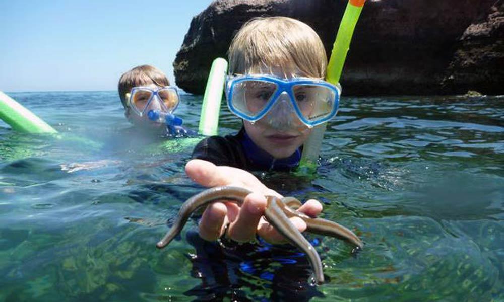 Family snorkeling in Baja