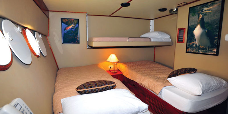 Lower stateroom with optional full-sized Pullman berth.