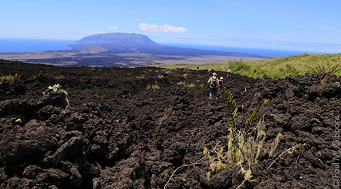 Wolf Volcano. Photo: Galapagos Conservancy