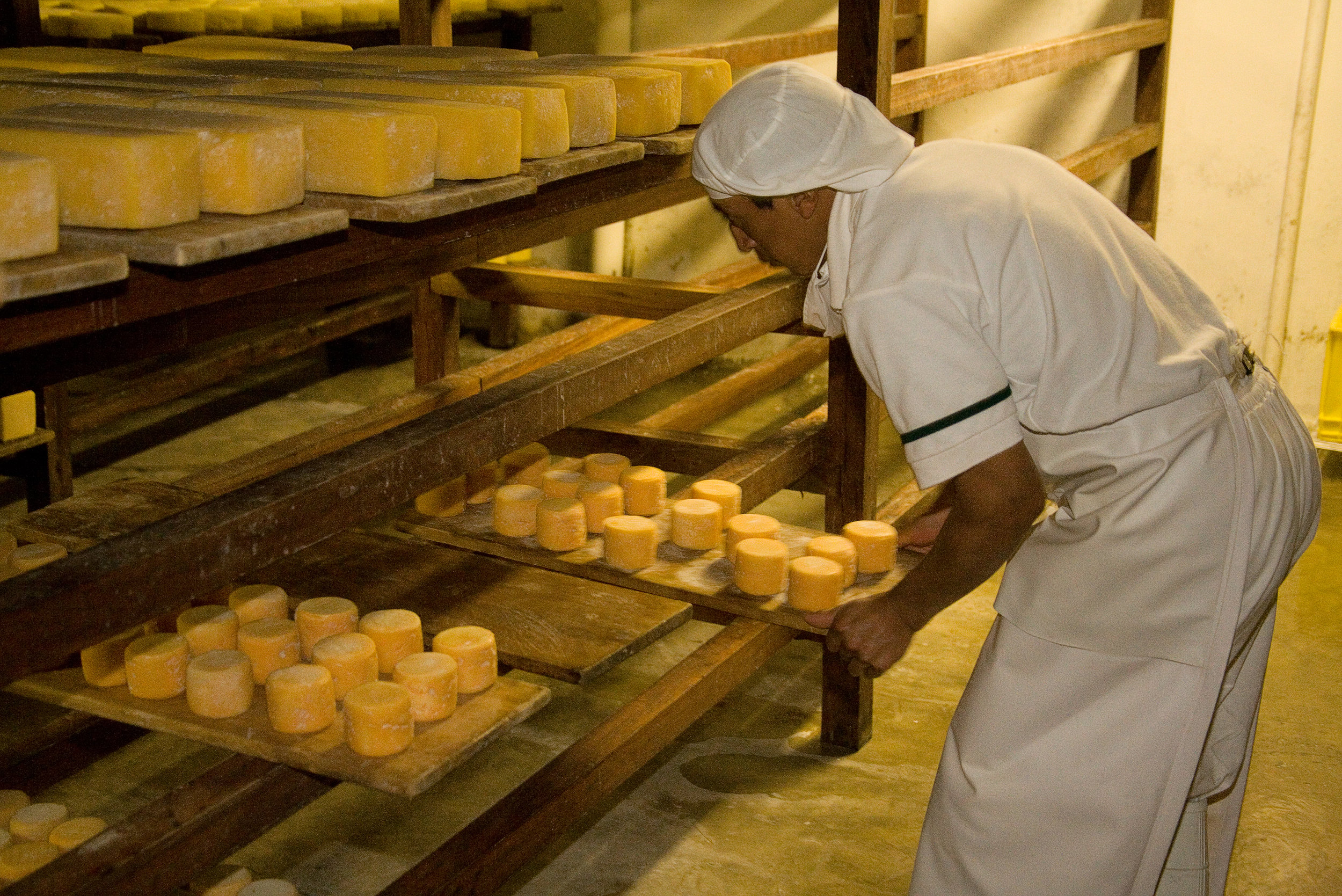 Cheese factory.jpg