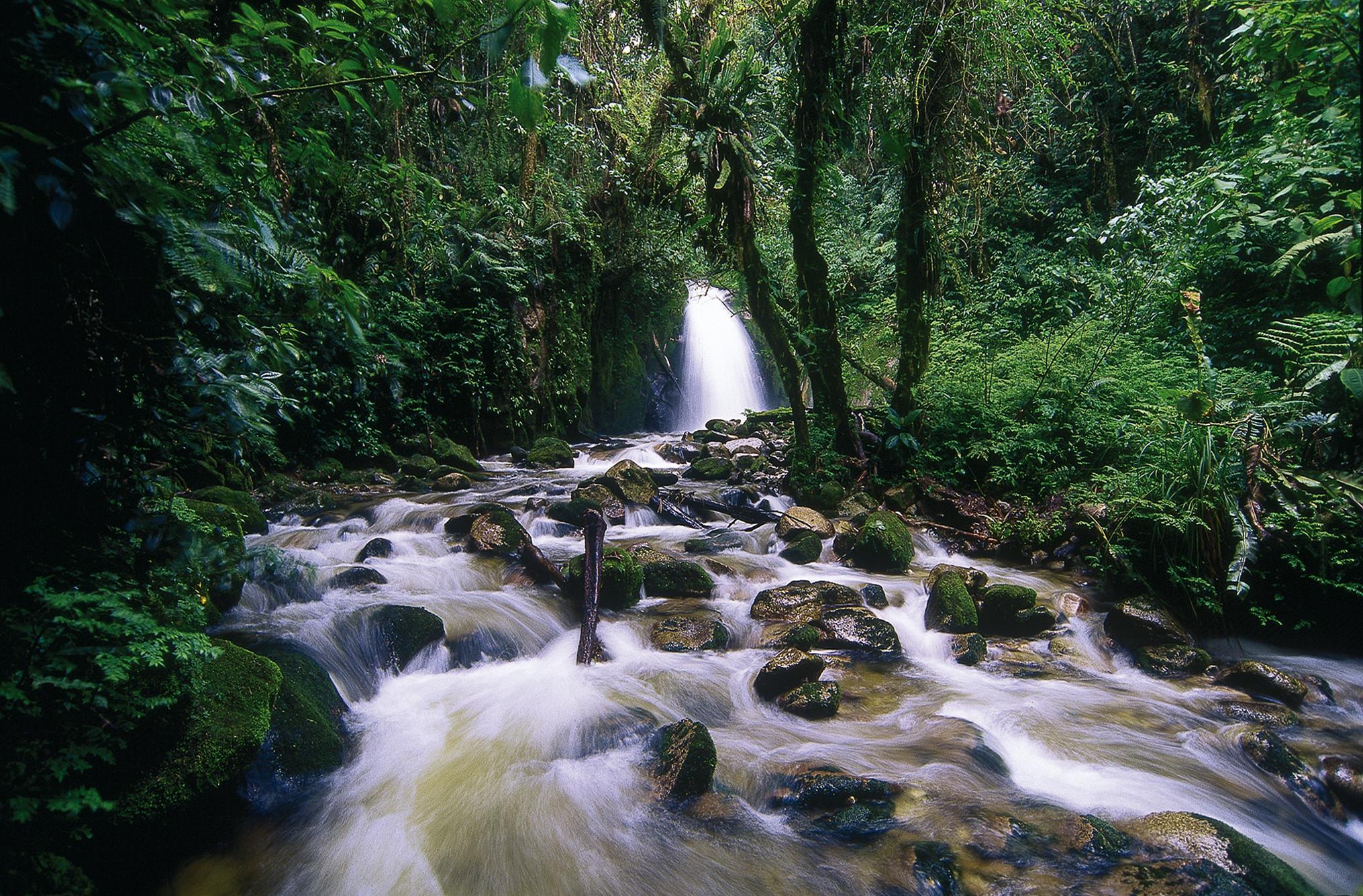 Creek beside Machu Picchu Pueblo hotel