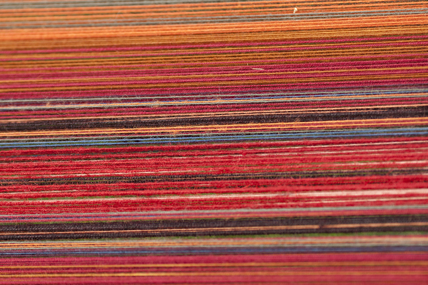 Colorful Weft