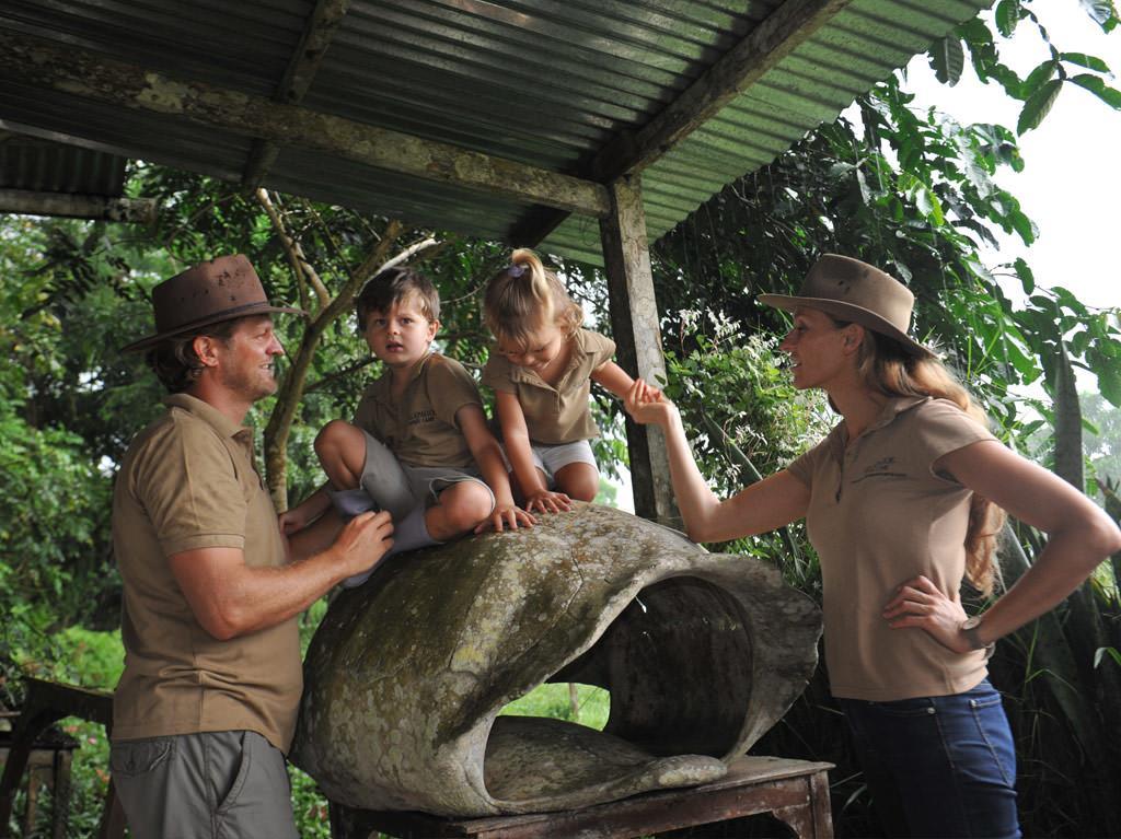 tortoise-shell-gsc.jpg