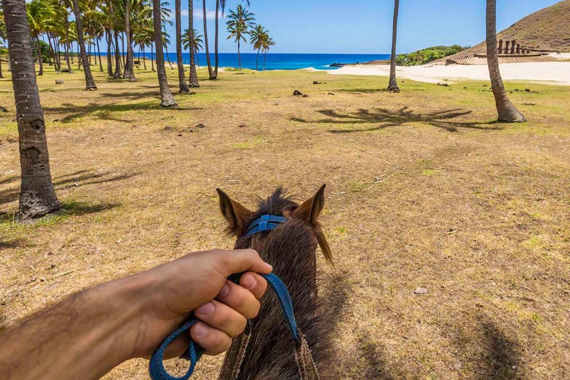horseback-riding2.jpg