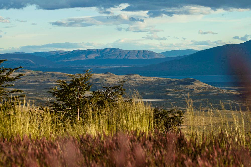 Landscapes-Awasi-Patagonia-(8).png