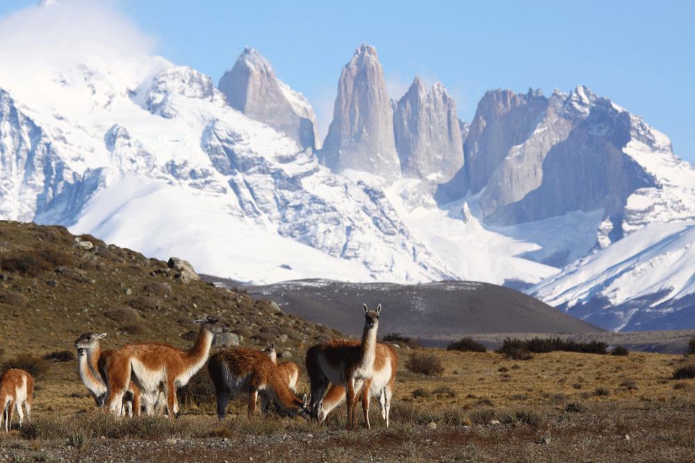 Outings-Awasi-Patagonia-(58).png