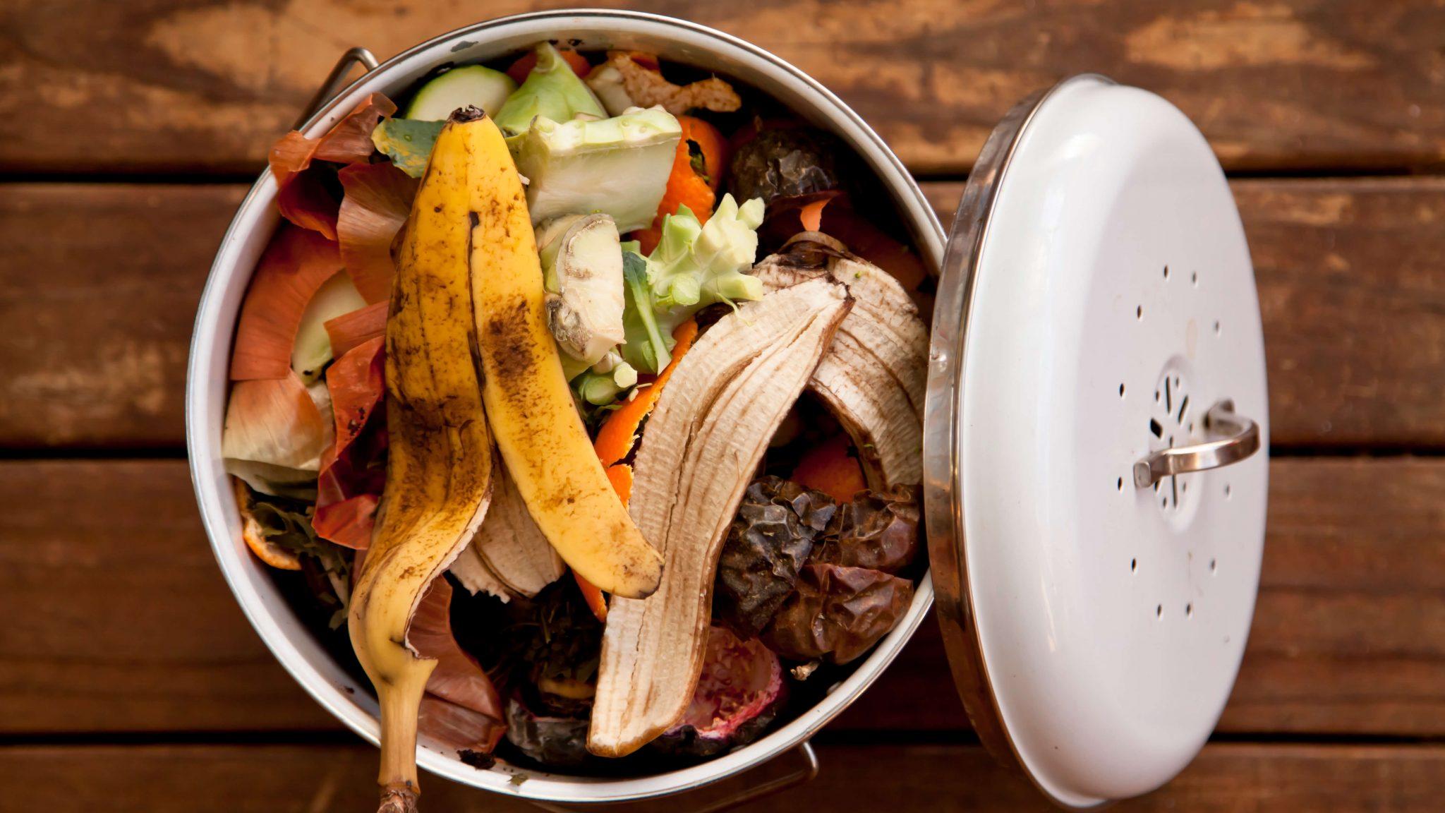 food waste 2.jpg
