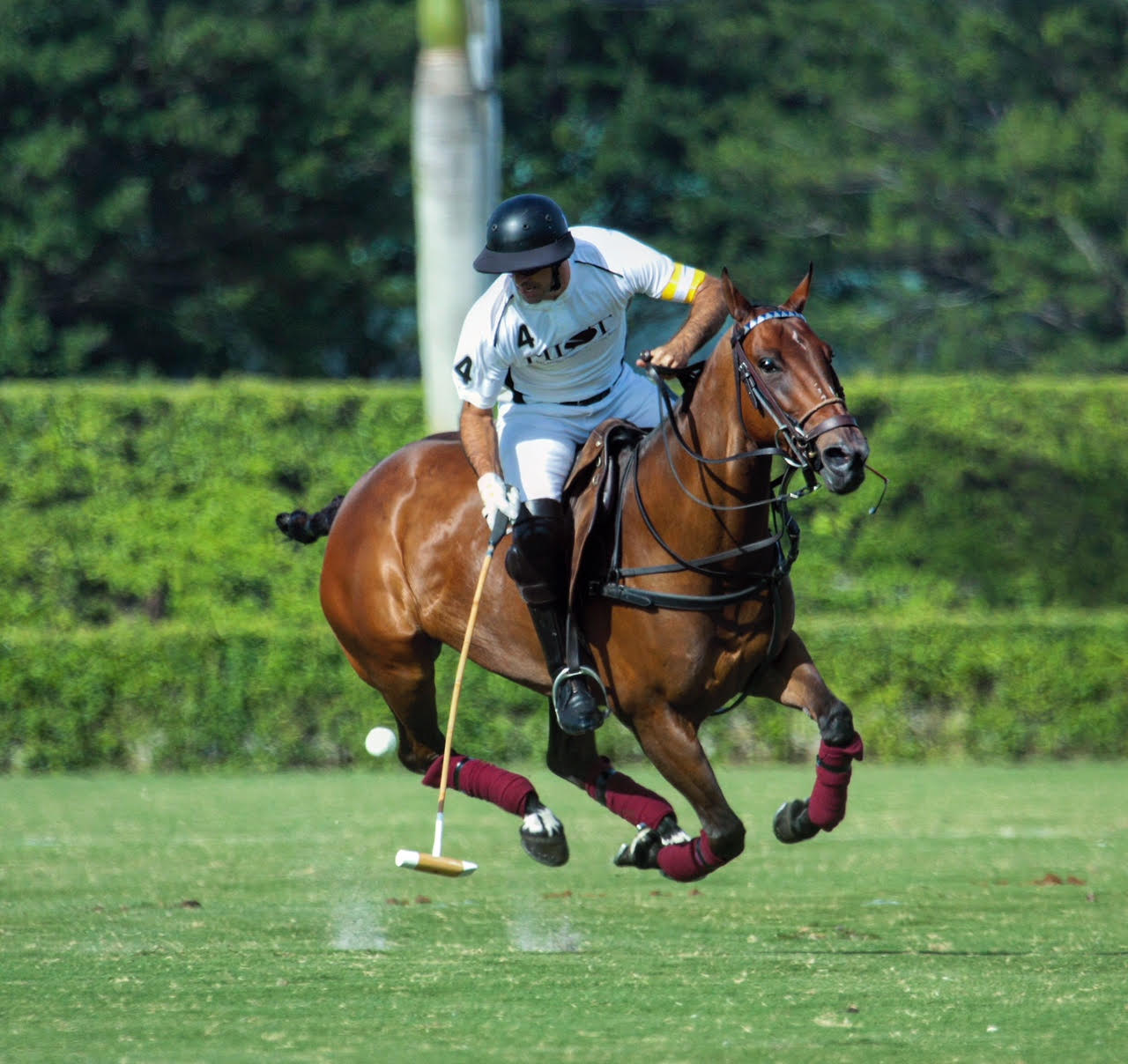 High-scoring Facundo Pieres of Pilot.jpg