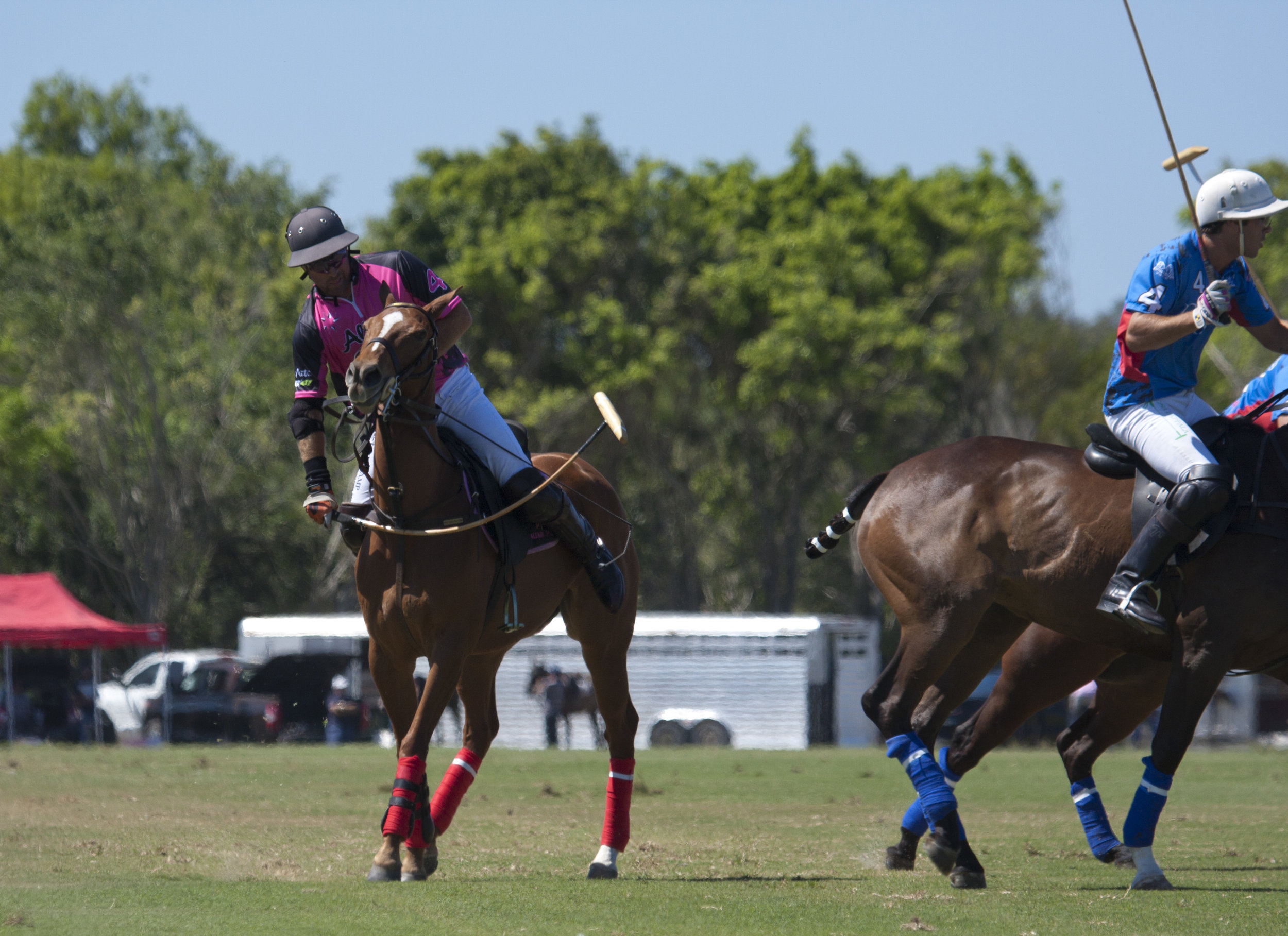 3-3-2018 Brandon Phillips of Altair Polo.JPG