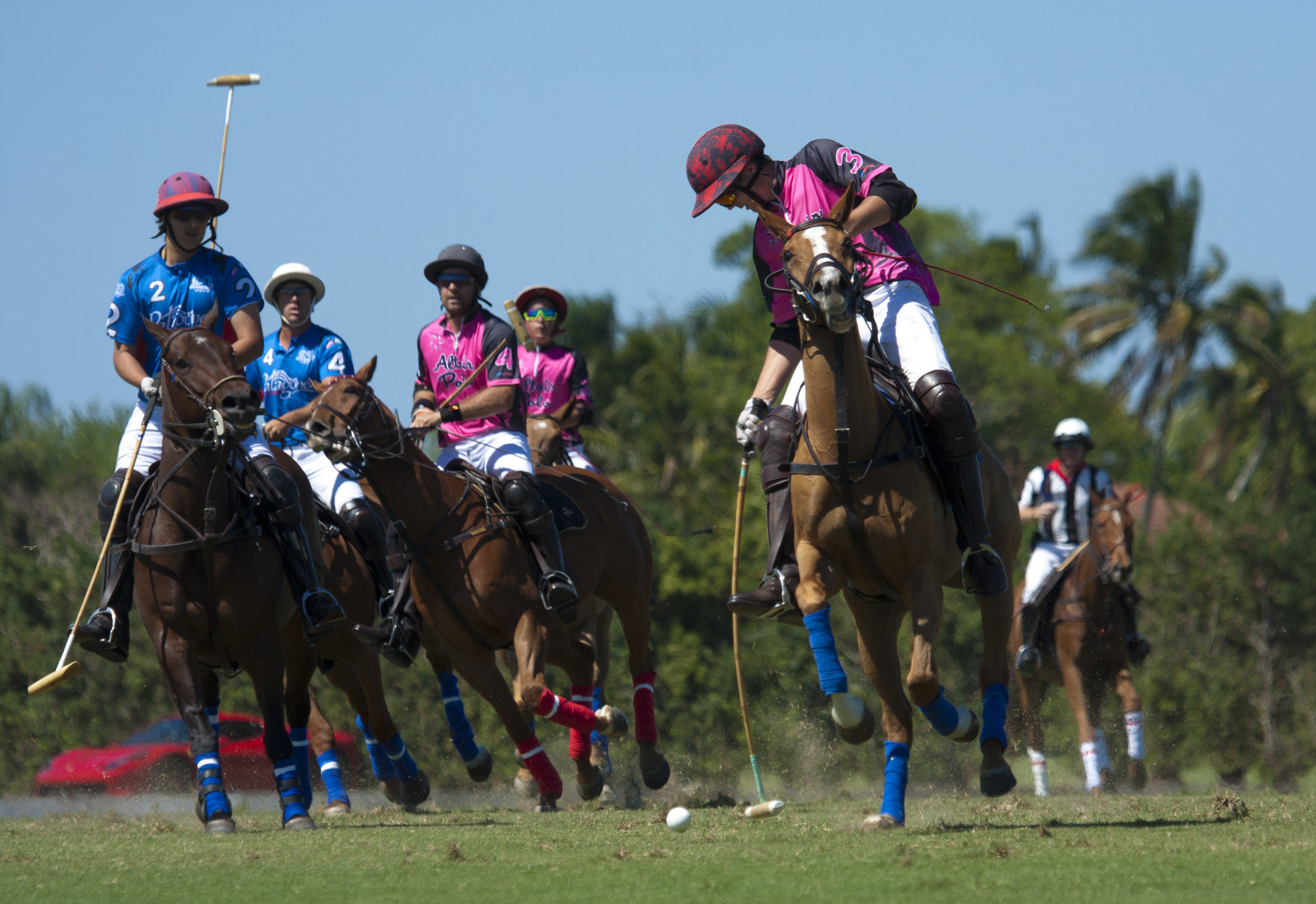 3-3-2018 Henry Porter of Altair Polo drives.JPG