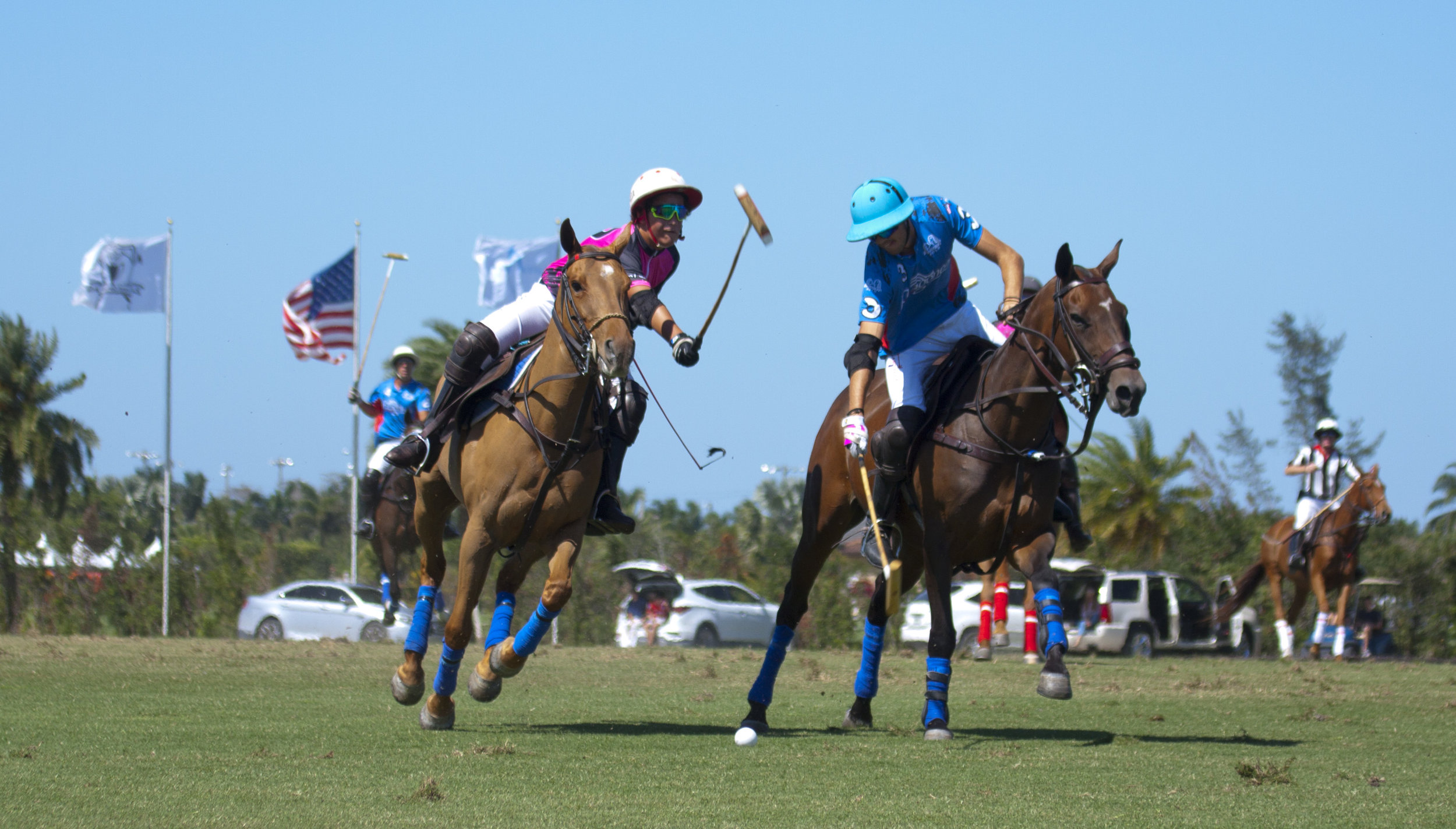 3-3-2018 Keko Magrini of Altair Polo tries to hoo.JPG