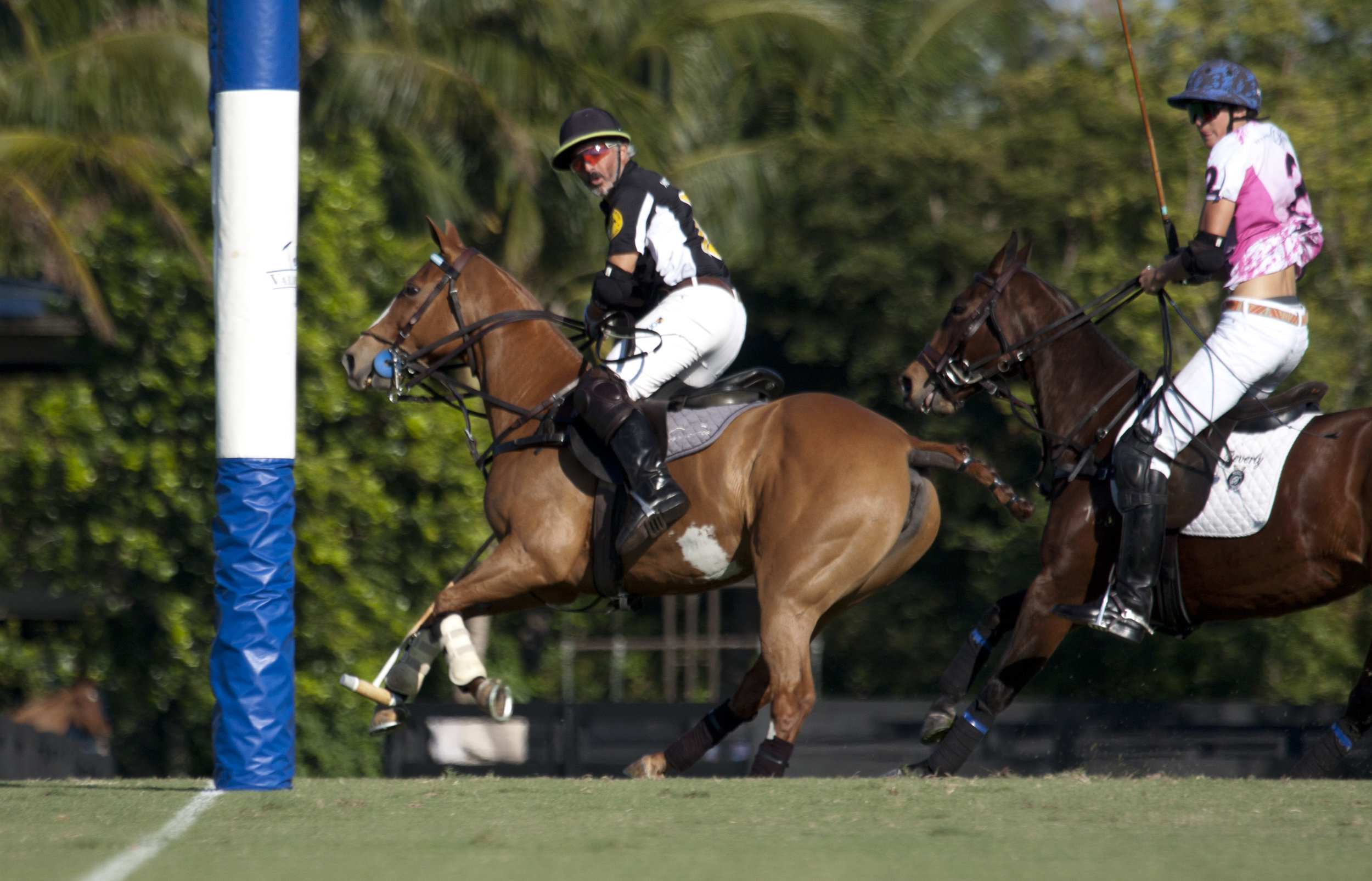 3-9-2018-Mariano Aguerre of Work To Ride scores just.JPG