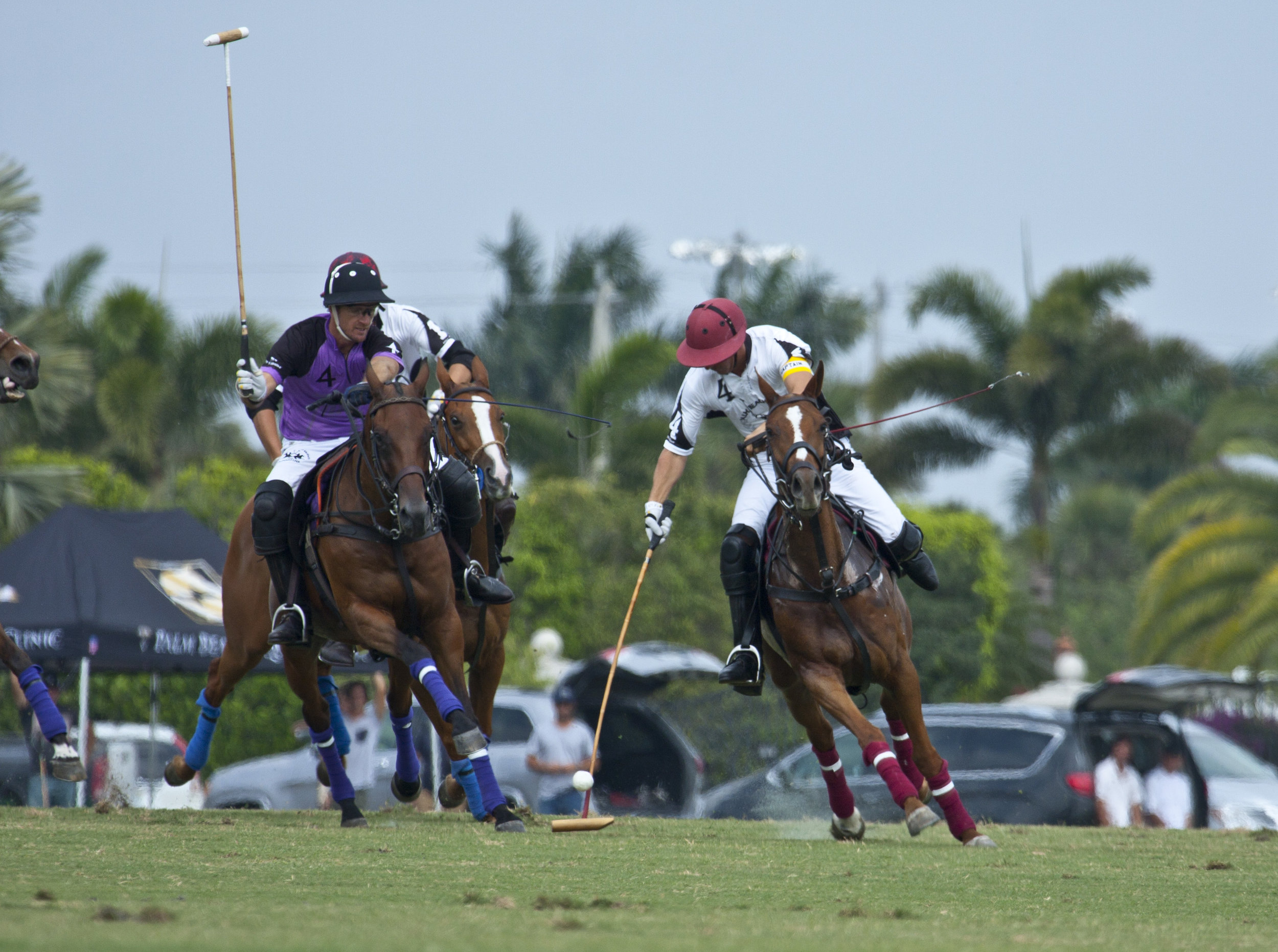 3-19-2018 Gringo Colombres of Palm Beach Polo.JPG