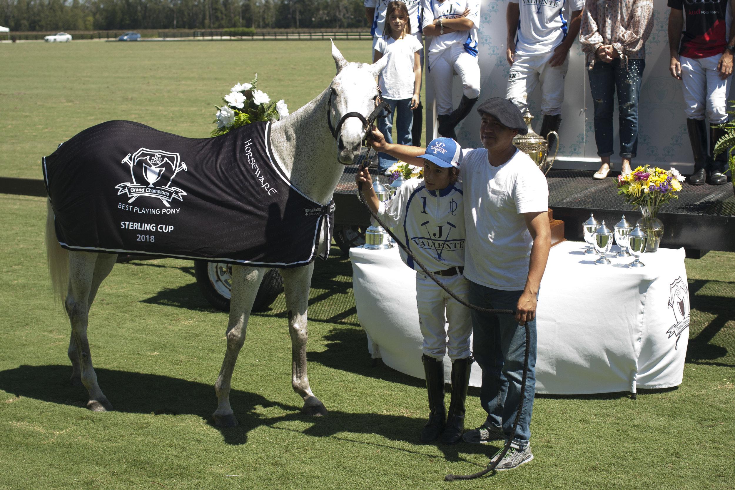 Grand Champions BPP Pony of the tournament, Julieta.JPG