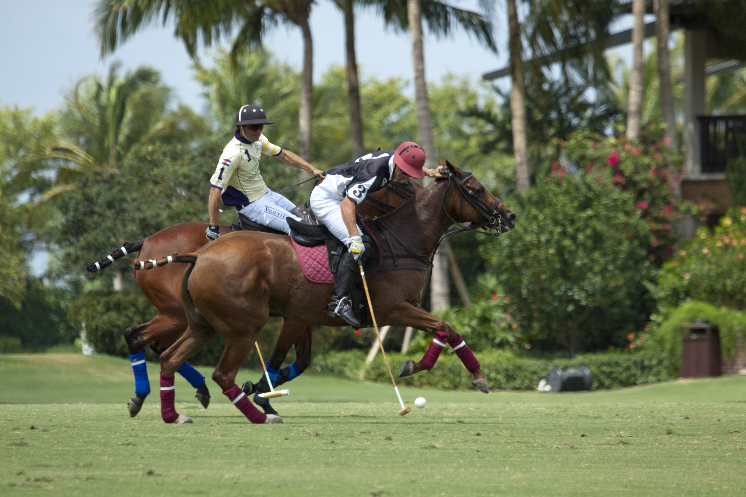 Gringo Colombres of Palm Beach Polo/Palm Beach Equine works the ball downfield.