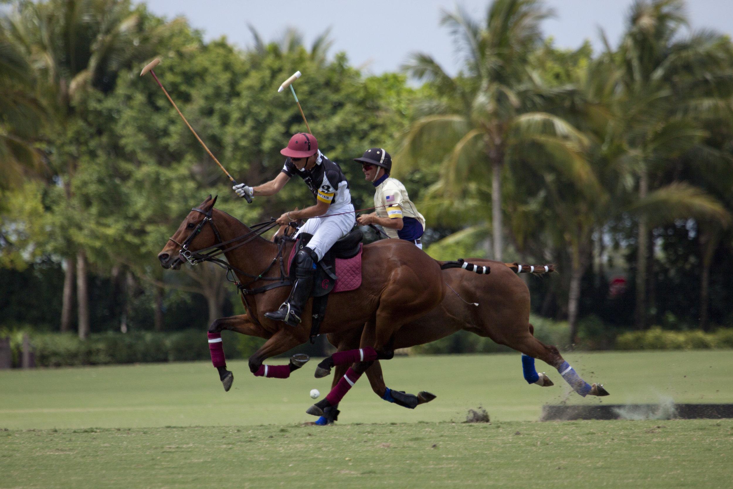 Gringo Colombres of Palm Beach Polo:Palm Be.JPG