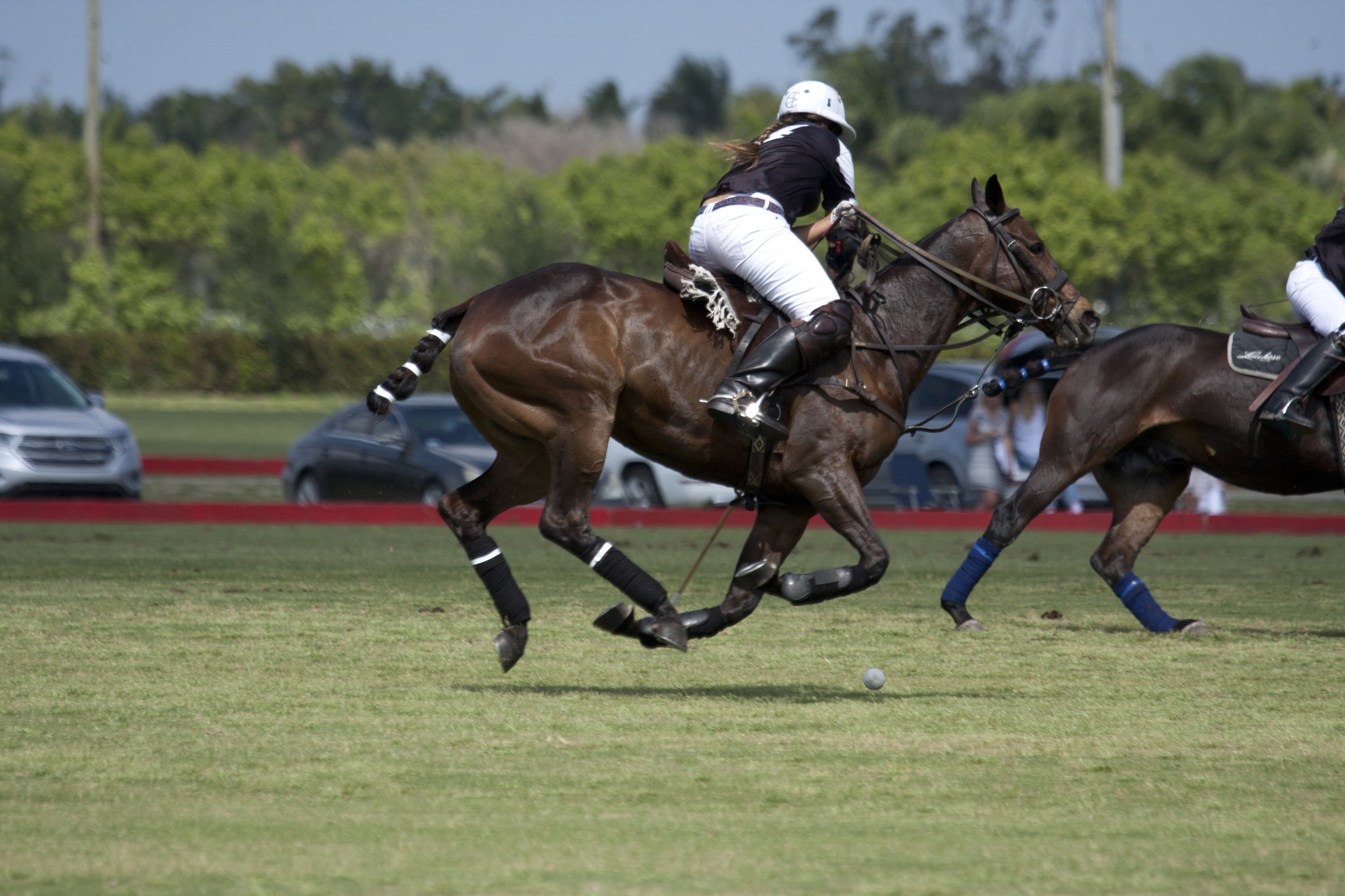 Courtney Asdourian of Hawaii Polo Life g.JPG
