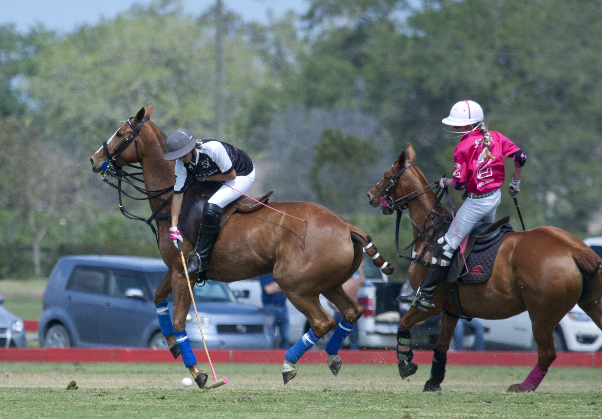 Mia Cambiaso of Hawaii Polo Life working nea.JPG