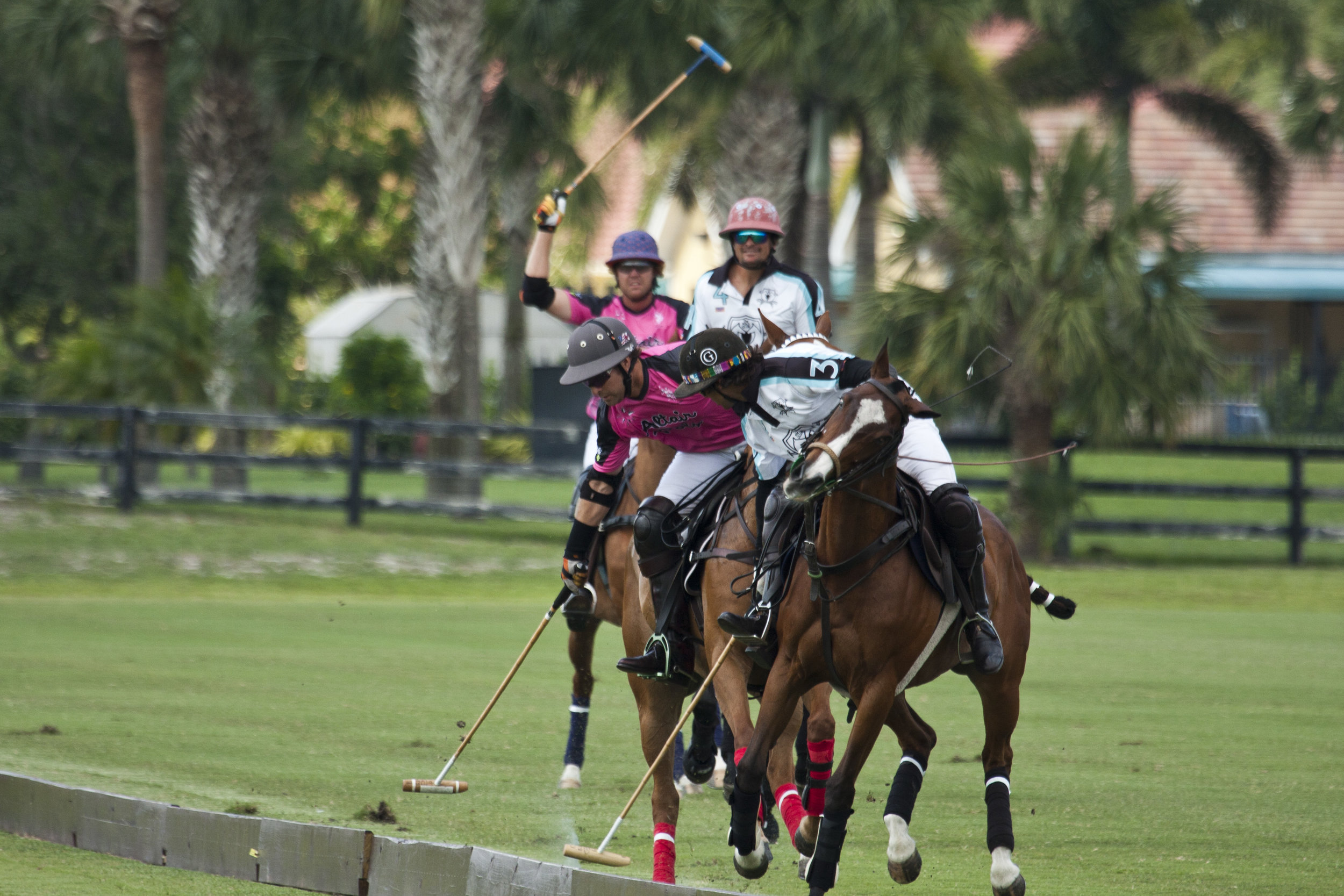 Brandon Phillips of Altair Polo works the sideboards w.JPG
