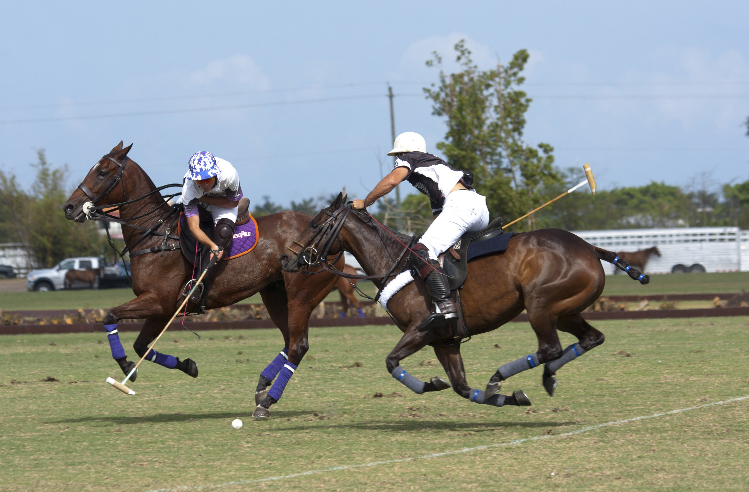 3-31-2018-Tony Calle of Travieso goes for the nearside.JPG