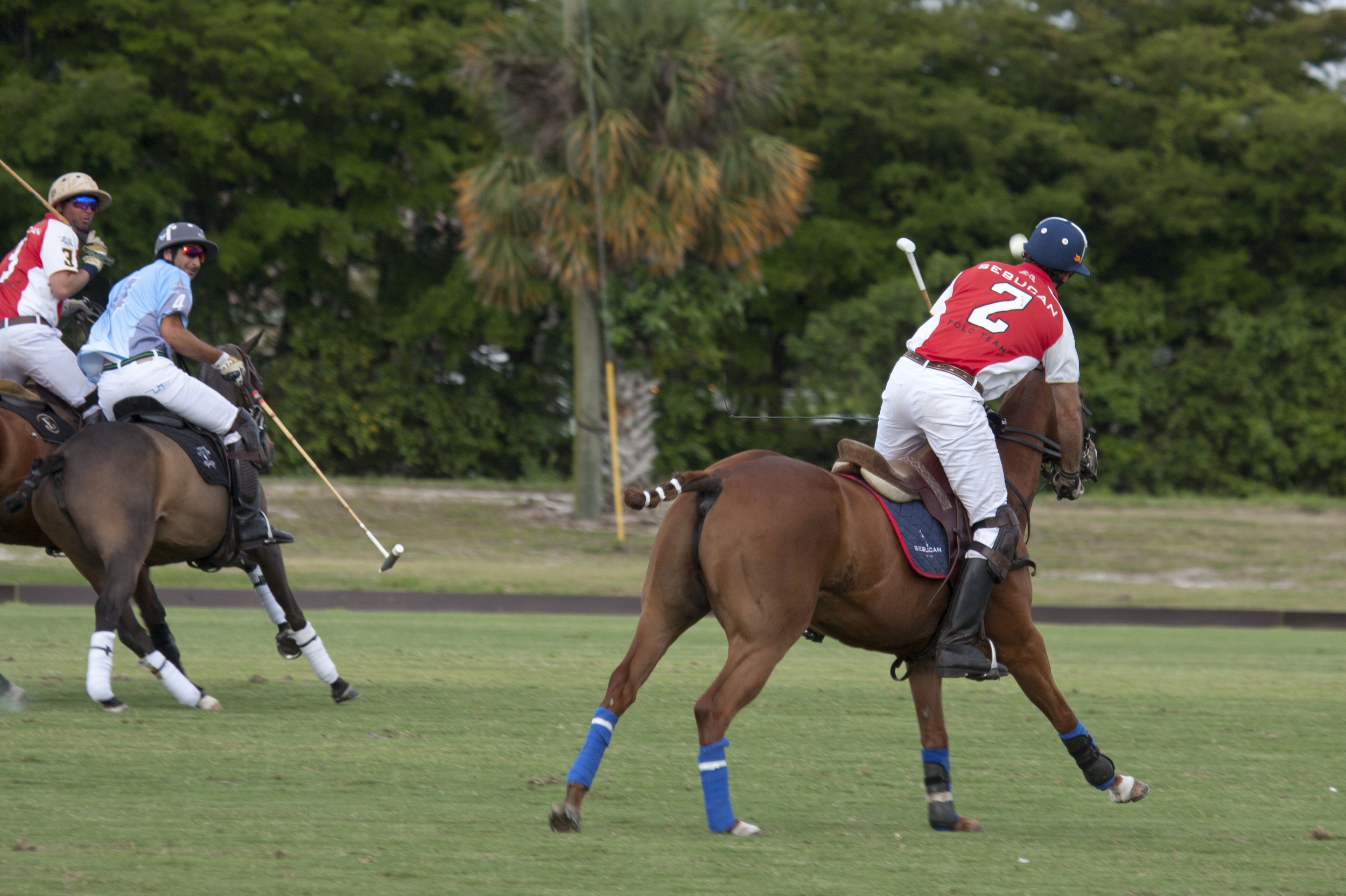Pablo Pulido of Sebucan tries to hit a bac.JPG