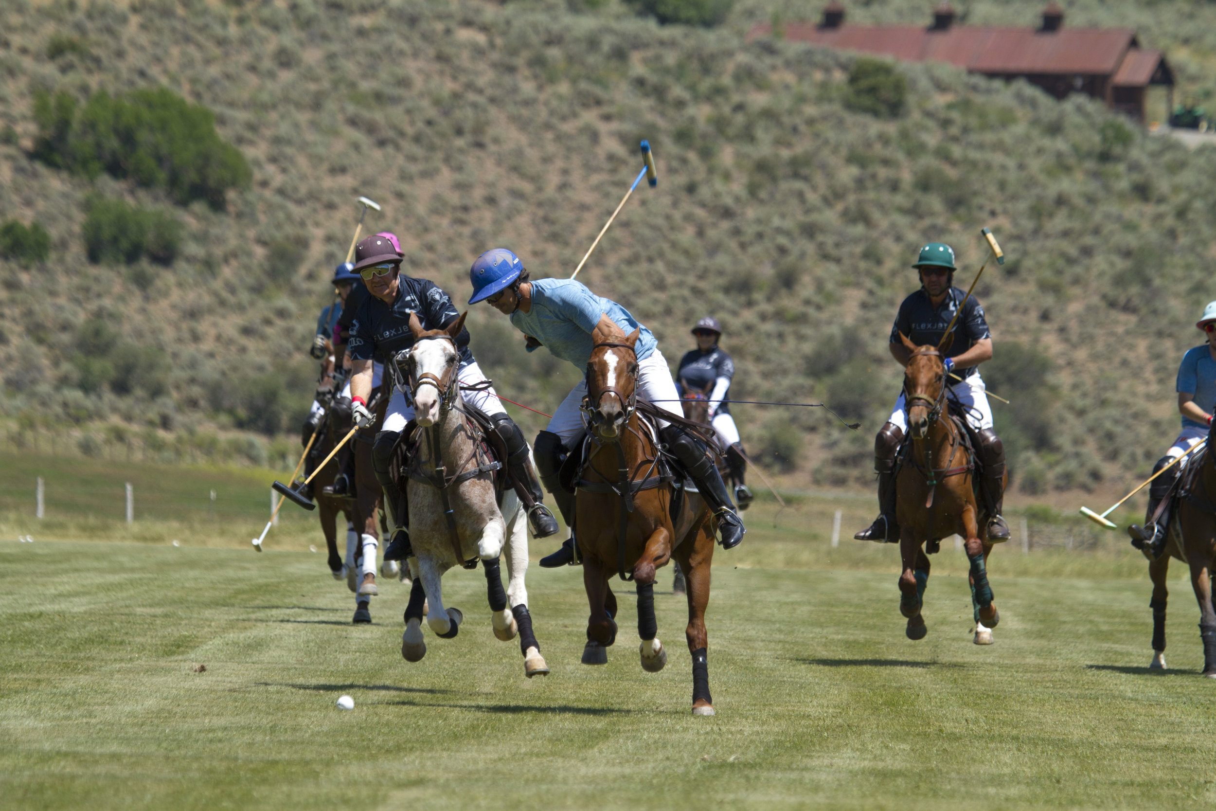 Nacho Figueras of Piocho goes for the big hit with Flexj.JPG